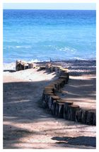 Strano serpentone in riva al mare