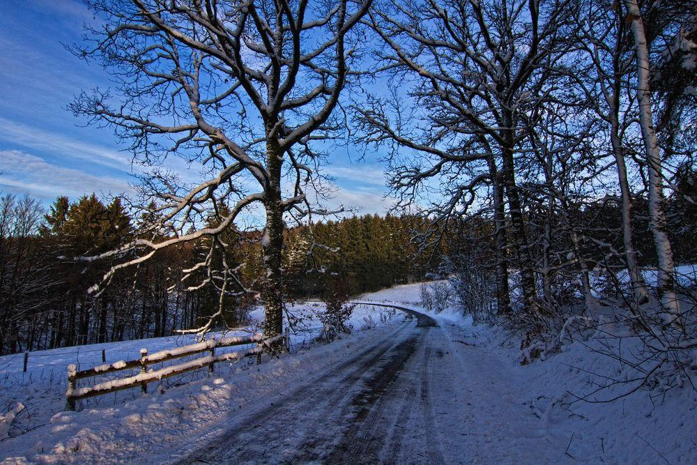 Straße durch den Winter