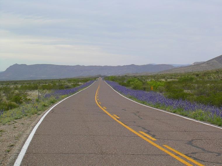 Straße im Big Bend NP/Texas