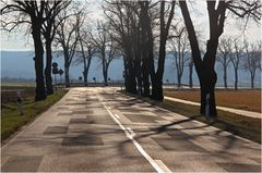 Straße im Fläming