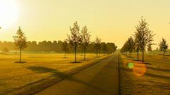 Strasse im strahlenden Morgenlicht