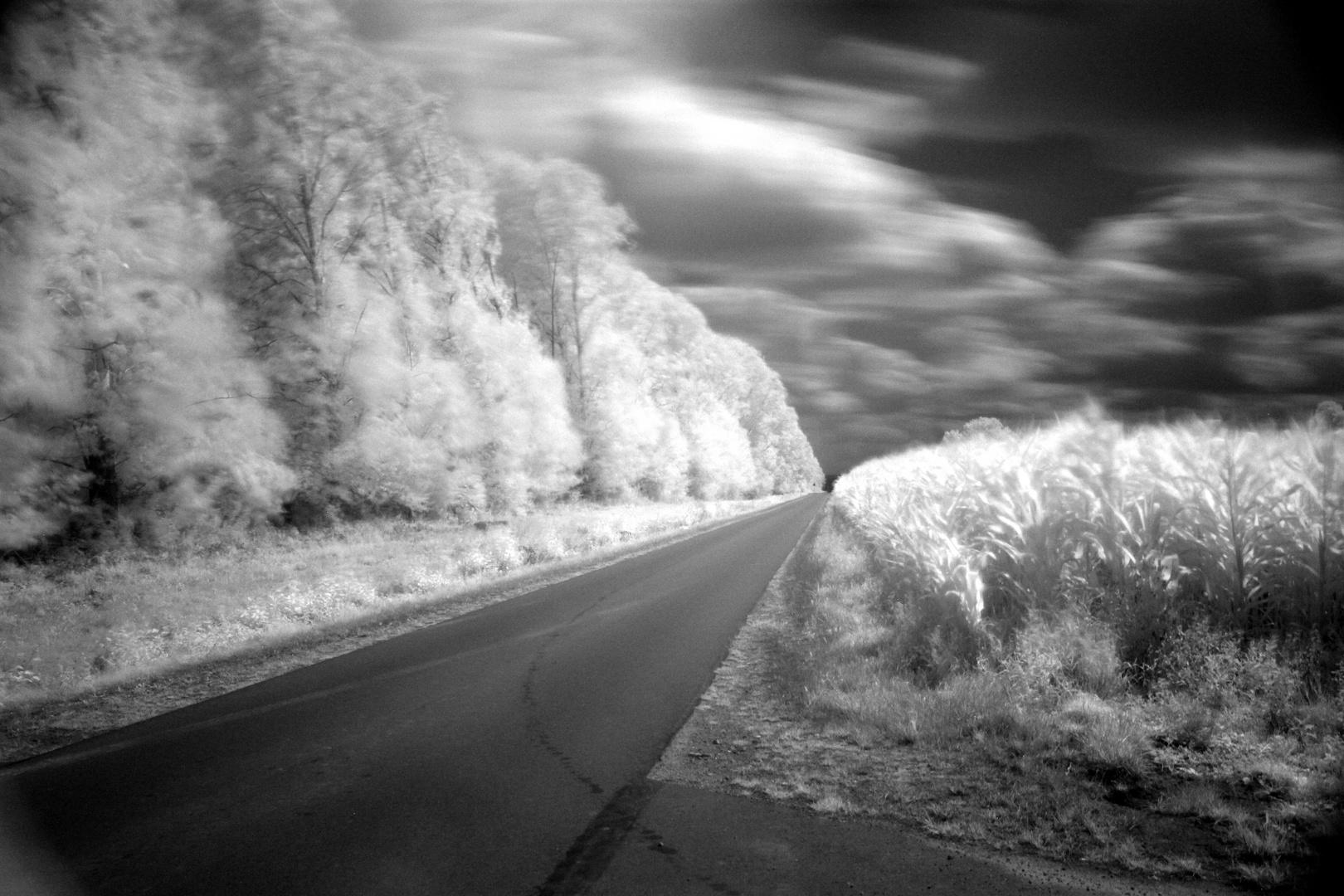Straße nach Altenhof