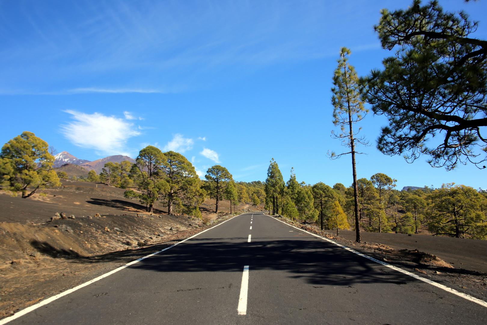 Strasse zum Teide