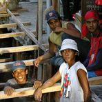 Straßenarbeiter auf Bali #8
