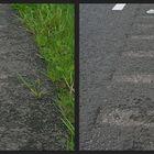 Straßenrand in NederLand