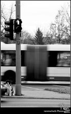 Straßenverkehrsregeln