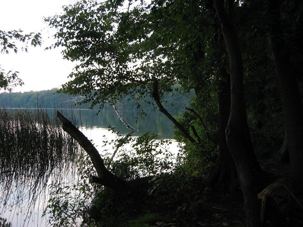 Straussee, Westufer