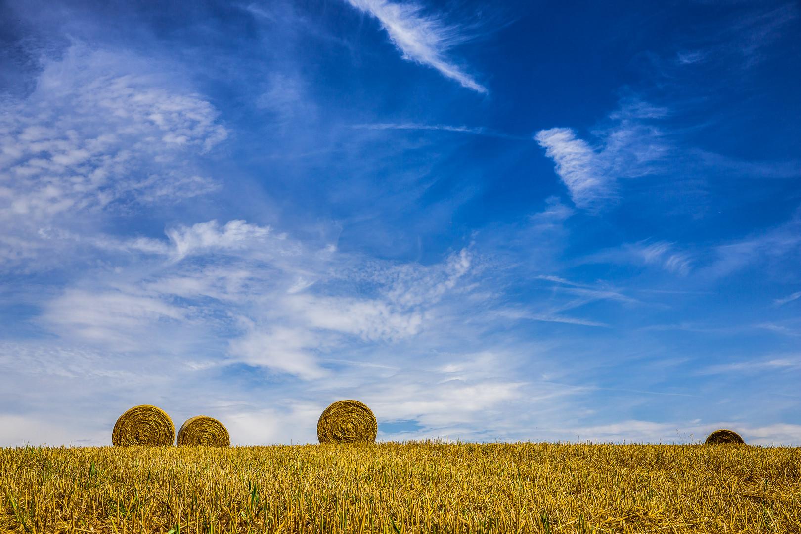straw.... fields