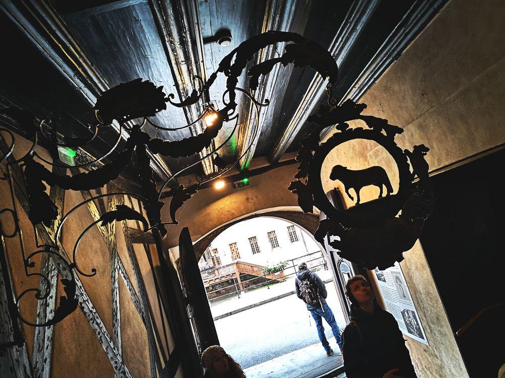 street Schaf Mann Strasbourg P20-19-colfi +SW +7Fotos