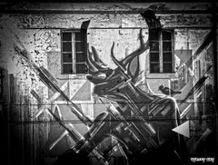 Street Tags and Graffiti Art in Bassano by INFART 3
