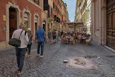 Streetlife Rome