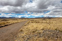 Streets of Bolivia (V)