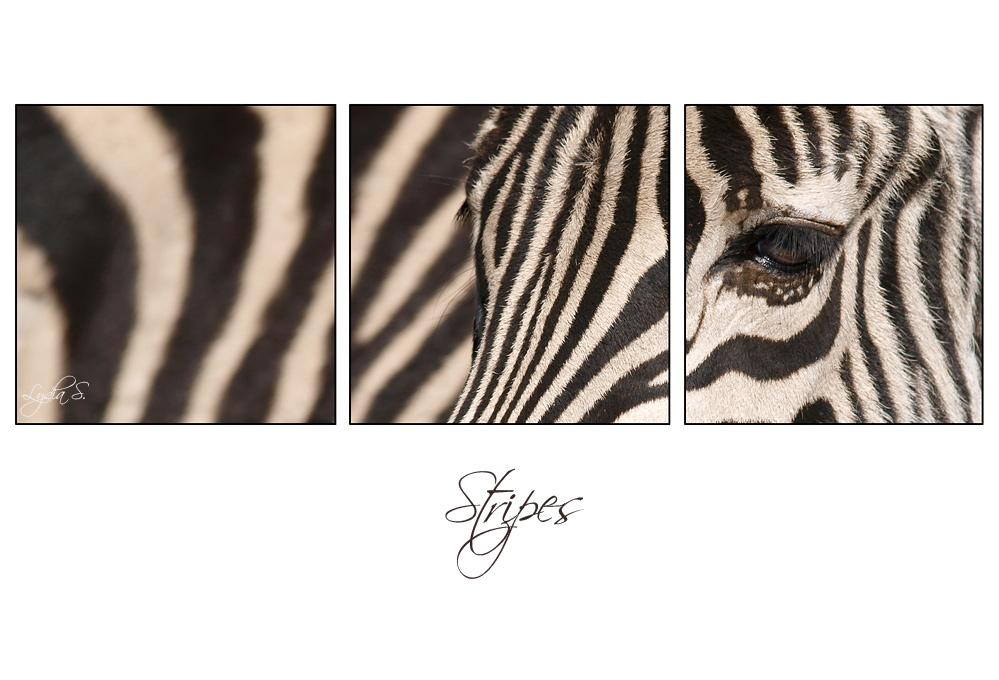 ...stripes...