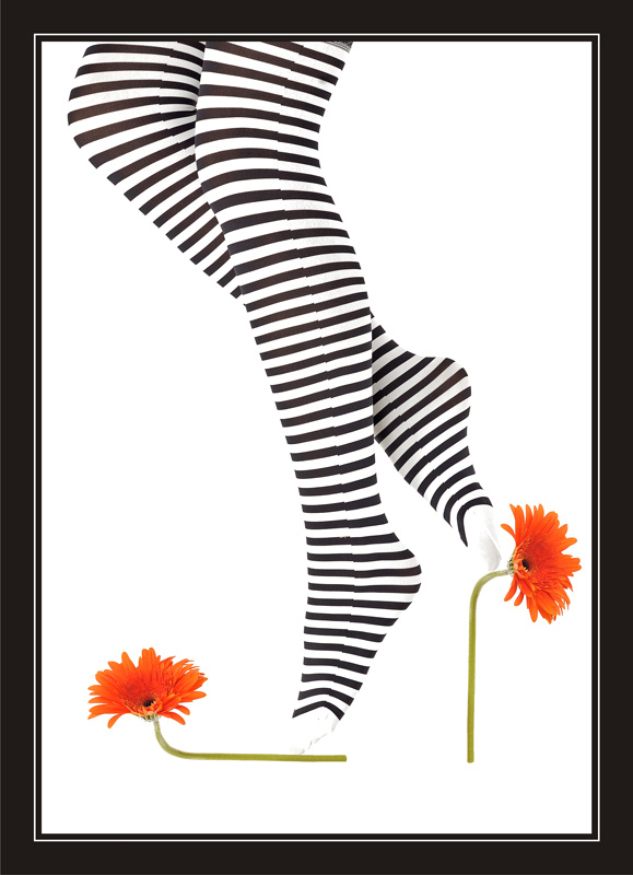 stripes and flower
