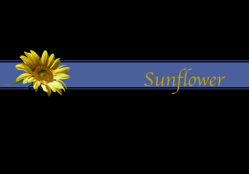 stripping sunflower