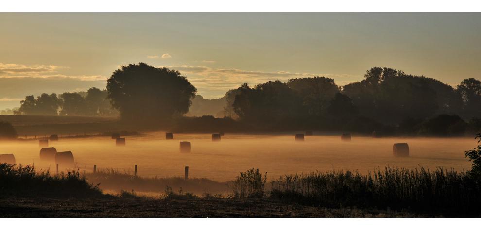 Strohballen schwimmen im Nebelsee