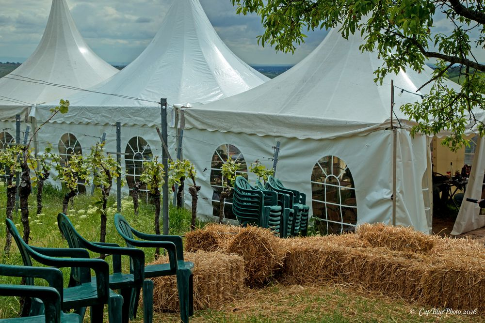 Strohballen und Festzelte beim Weinfrühling in Birkweiler