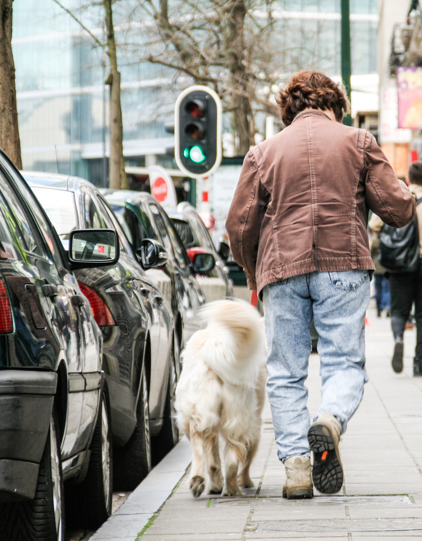 Stroll with the dog (Brussels, Apr 2016)