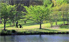 Stroller-ing by Lake Caroline in Golden Hour - A Meadowlark Moment