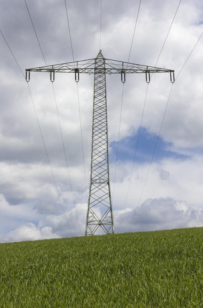 Strommast auf Wiese