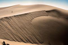 """ Structure of desert"""