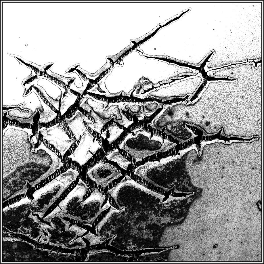 Struktur 5