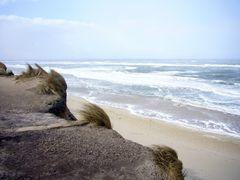 Stürmische Nordsee am Strand von Kampen auf Sylt