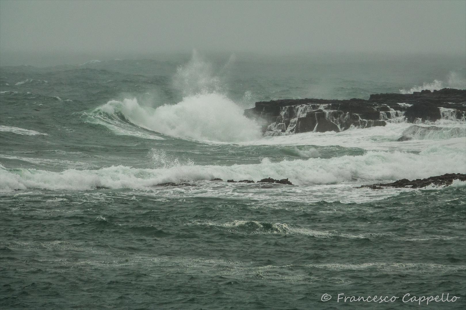 stürmische See (3)