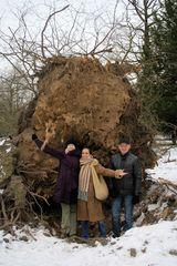 Sturmschaden durch Sturm Xynthia im Schlossgarten 03