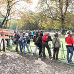 Stuttgart 1.10 14:30h Park - Plakat: Wo Recht zu Unrecht wird ..