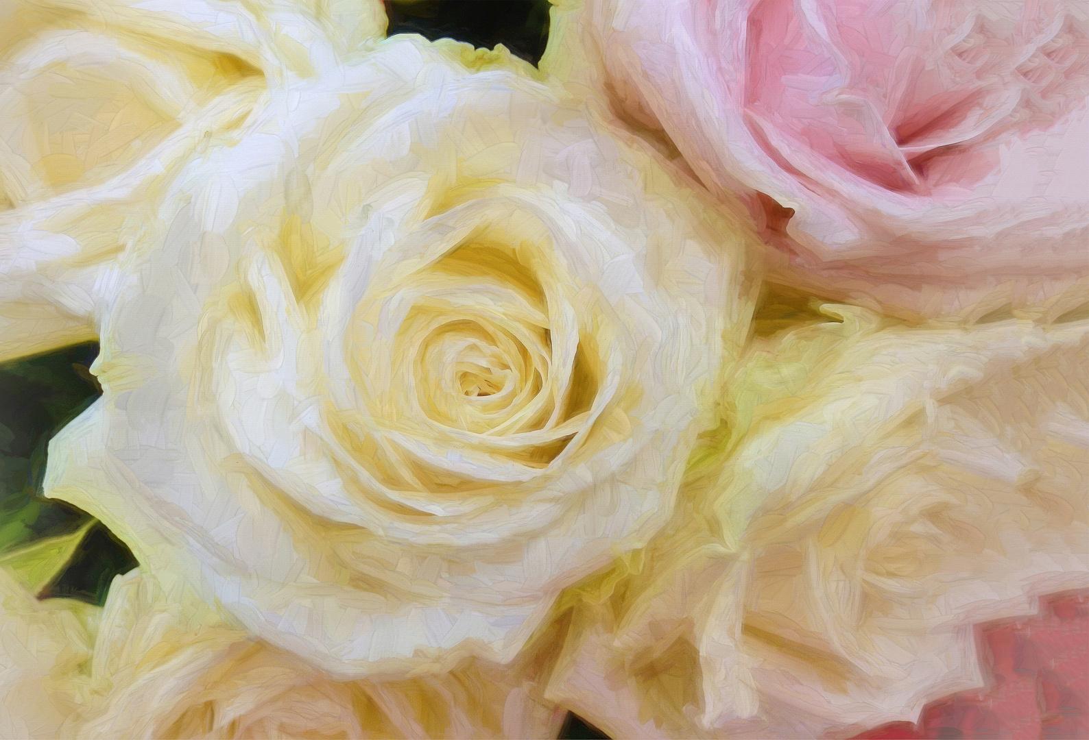 Suaves flores de  rosas