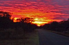 Sudafrica: The rising sun