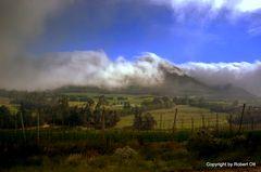 Südafrika hat viele Landschaften