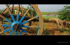 Südindien 03