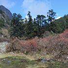 Südlich von Bhimtang auf dem Manaslu-Trek