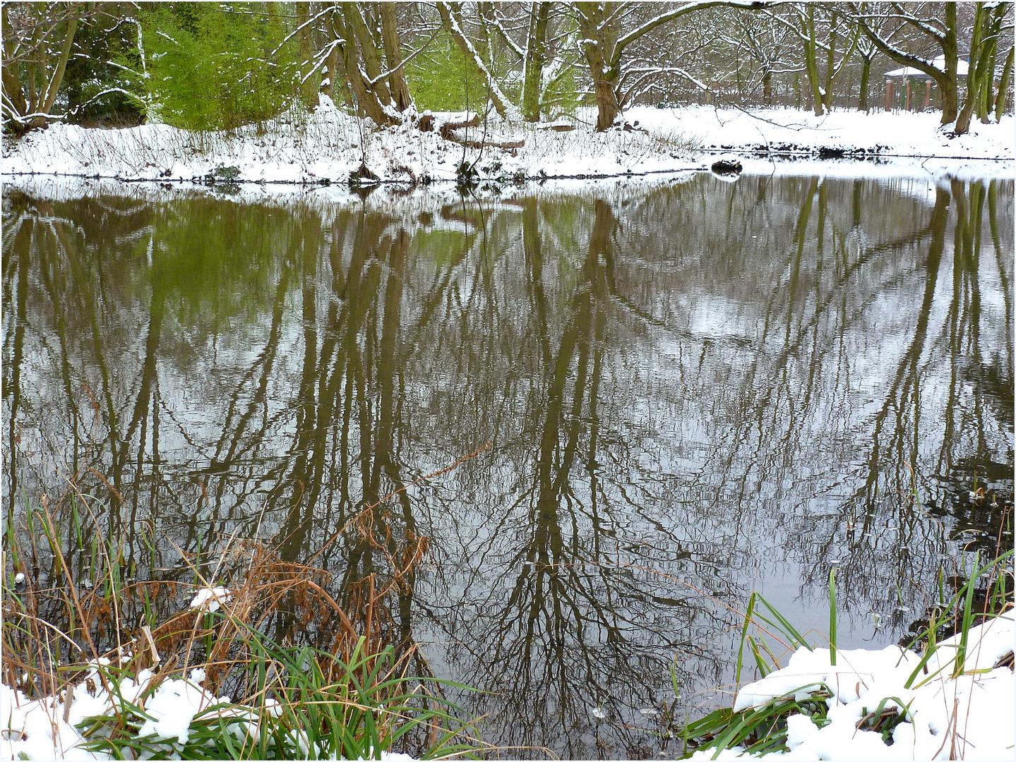 Südpark-Teich