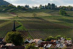 Südpfalz - Toskana Deutschlands
