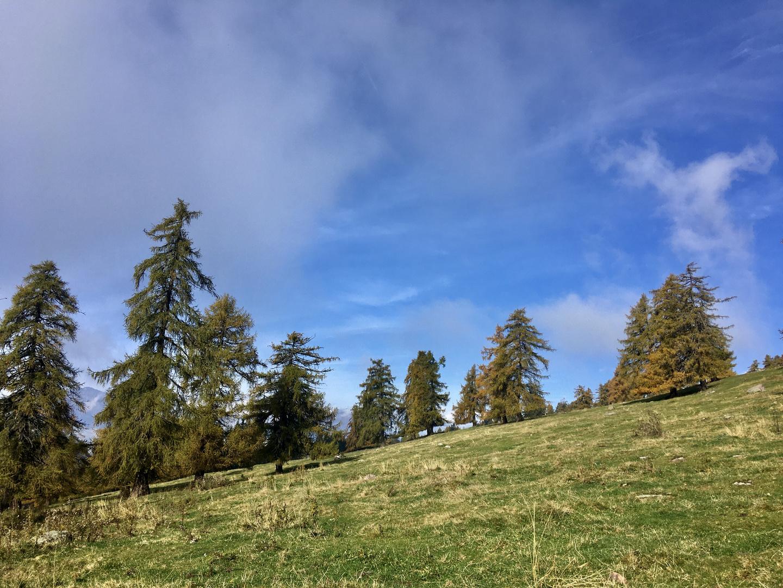 Südtirol-Impressionen