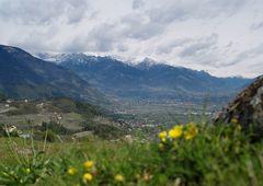 Südtiroler Ansichten