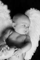 Süß wie ein Engel.