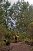Sulfatstone carrier on his way down the Ijen mountain