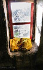 Sulla finestra del Mondo