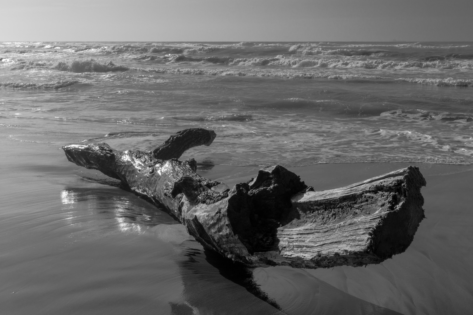 sulla riva del mare