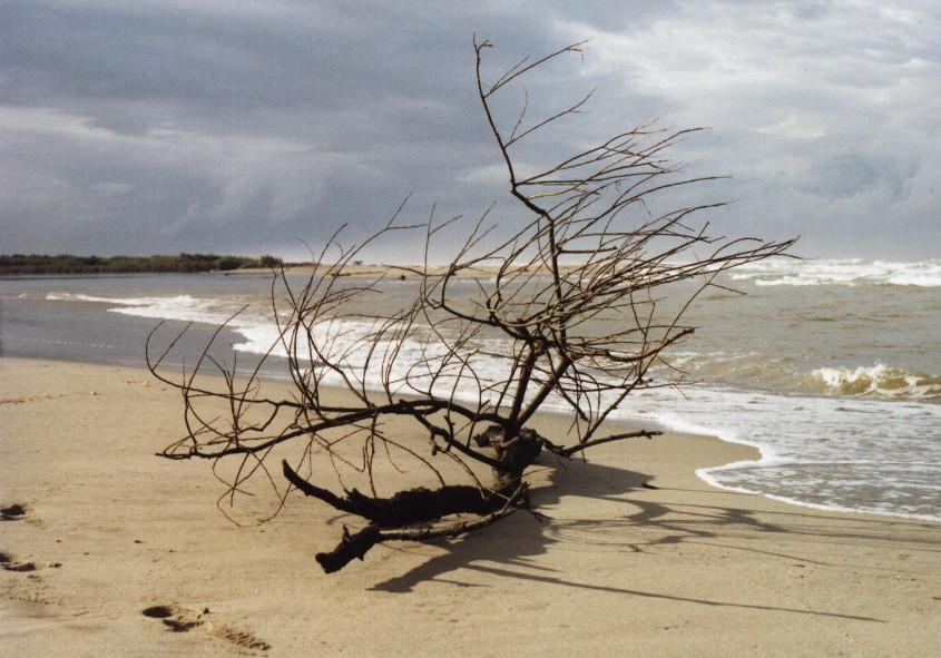 sulla spiaggia a Gennaio