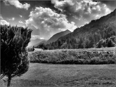 Sulle Alpi in BN...