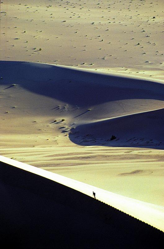 Sulle dune, al centro della Cina