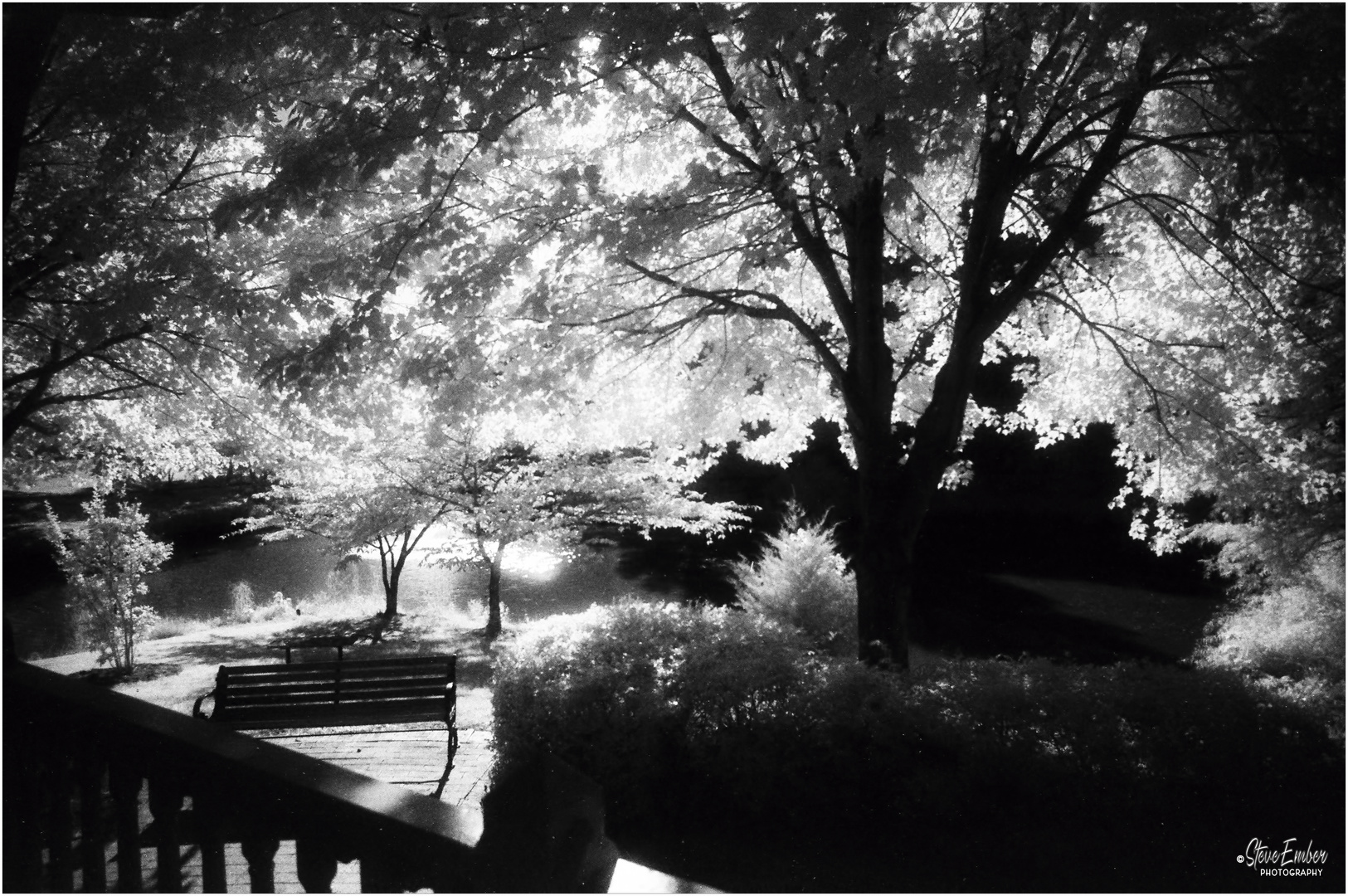 Summer at Quiet Waters No.7 - An Infrared Impression