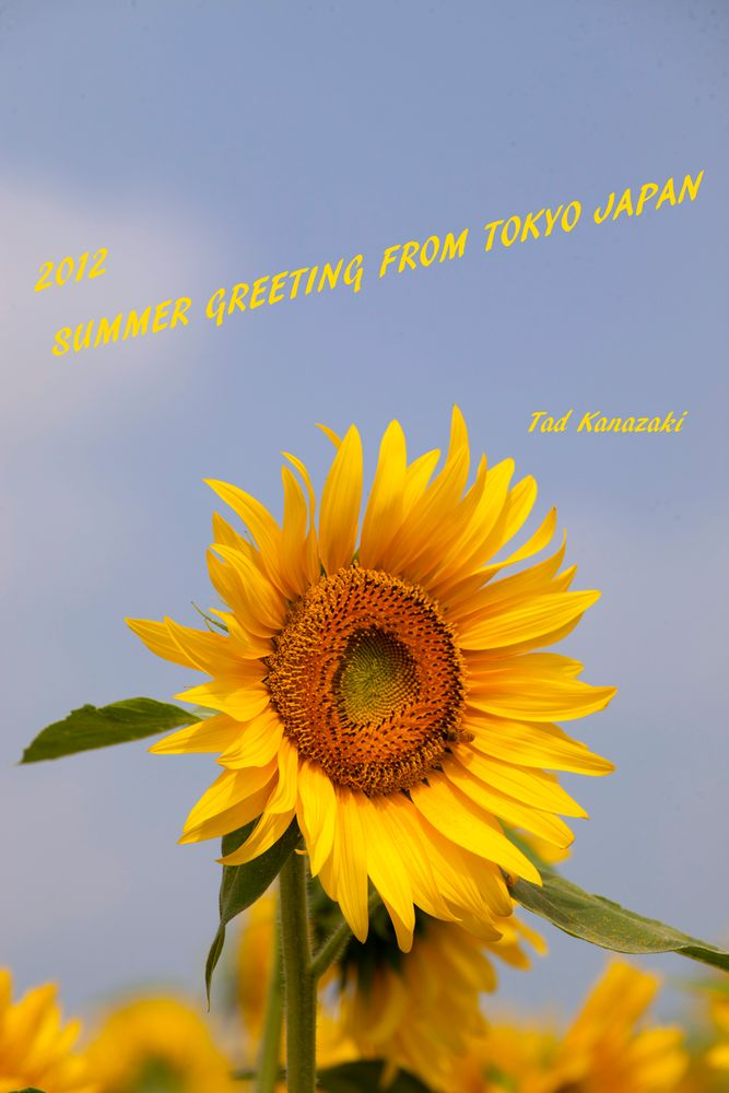 Summer Greeting to All FC Members