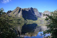 ...summer on Lofoten...