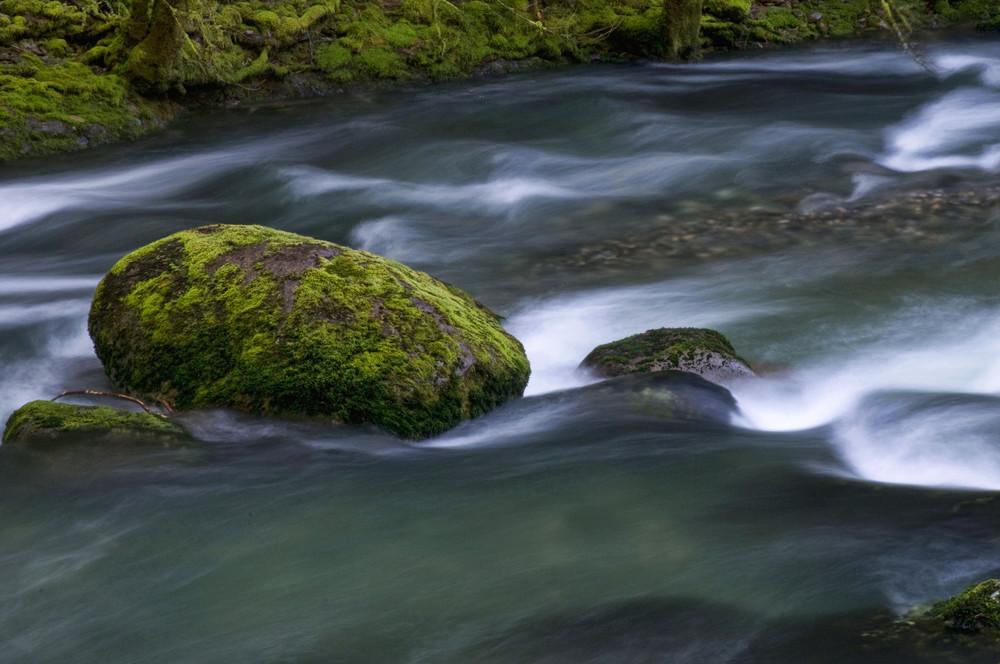 Summer rapids.